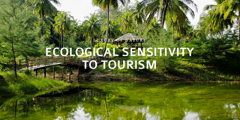 Responsible Tourism 