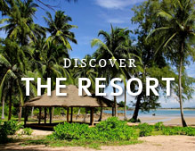 Discover the Resort